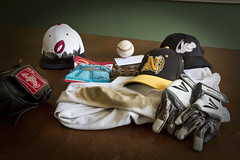 End of One Season, and on to the Next (brucetopher) Tags: sports sport dedication work ball season baseball equipment dedicated pitcher hardwork baberuth passtime walkoff sportingequipment americasfavoritepasstime payoff
