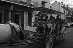 Tour (tacosnachosburritos) Tags: neworleans bigeasy crescent city urban street photography horse carriage wheels quirky lady woman ride transportation tour tourists tourism hat crown