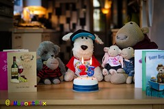 Happy 25th Birthday Arf! (twinnieE) Tags: birthday cute cake toy arthur funny candles teddy fluffy celebration doggy