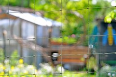 HFF (nirak68) Tags: fence heart zaun herz draht hff eutin schleswigholsteinostholstein 2016ckarinslinsede landesgartenschaueutin