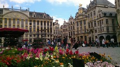 25/52 Rule of Thirds (flailing DORIS aka Fur Will Fly) Tags: flowers brussels architecture buildings belgium grandplace market stall marketsquare ruleofthirds 2016 week25 2552 project52 project522016