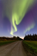 Country Road Aurora (adamhillstudios) Tags: road north aurora dirtroad northwestterritories northernlights auroraborealis nightskies