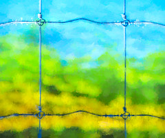 When Someone Builds a Barrier (Steve Taylor (Photography)) Tags: blue abstract green yellow metal digital fence wire bright colourful immigration thegrassisalwaysgreenerontheotherside ofthefence