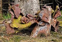 Tanz der rostigen Waldgeister 1 (DianaFE) Tags: rost wald figur blech zufall