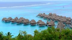 Hotel Sofitel Moorea Ia Ora Beach Resort   Moorea   Tahiti   French Polynesia (Ben Molloy Photography) Tags: sea vacation holiday beach water french polynesia hotel heaven paradise resort clear ia tahiti ora luxury sofitel moorea  