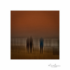 Shoulders set to sunset (muriel_binnie) Tags: scotland icm 2015 lunanbay intentionalcameramovement