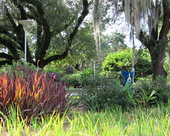 New Orleans (quirkyjazz) Tags: blue summer art outdoor spanishmoss nola sculpturegarden noma corgie neworleansmuseumofart southernliveoaktree