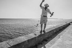 DSC_5619 (Pasquesius) Tags: sea island fisherman dock mare lagoon sicily laguna saline molo sicilia pescatore saltponds isola marsala mozia mothia stagnone motya riservanaturaledellostagnone
