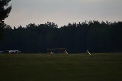 DSC_1013 (SkyPilot181) Tags: airplane aircraft airshow flyin d11