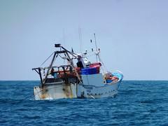 071. Fishing from Vilamoura. 03-May-13 (paulfuller128) Tags: sea sun holiday beach portugal marina sand algarve albufeira vilamoura portimao orada albufeiraoldtown
