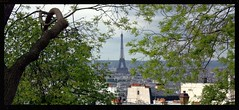 Eiffel Tower through the trees from Montmatre