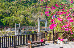 Harry_09677,,,,,,,,,,,,,,,,,,,,,,,,, (HarryTaiwan) Tags: taiwan    d800                           harryhuang