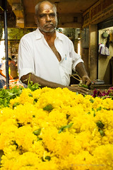 The flower merchant (nkumarm) Tags: portrait flower canon eos flora market portraiture 1855mm efs flowershop cwc koyambedu 550d koyambedumarket chennaiweekendclickers environmetalportrait flowerbazar