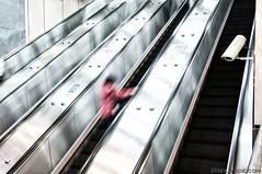 Taipei MRT 013 (neilwade) Tags: camera woman up station hub train underground subway asia publictransportation ride main escalator steps taiwan railway security railwaystation trainstation transportation lone handrail taipei mrt    mainstation   taipeimrt