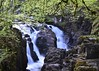 Hermatige Water Falls (Stephen Whittaker) Tags: green fall water waterfall moss nikon hdr d5100 whitto27