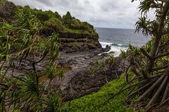 Ohe'o Gulch (thefuton) Tags: ocean travel trees nature water coast rainforest rocks waves pacificocean gulch oheogulch