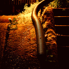 Snaking (keri_friedman) Tags: grass mobile oregon yard portland tube samsung drain sidewalk galaxy photoaday pacificnorthwest pdx 365 vignette android buckman samsunggalaxy