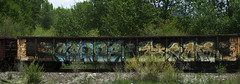 SEO TERMS (Emptiness Of Light) Tags: art train graffiti colorado pacific south union fork co 2009 freight seo seone terms cik cnw seo1 diget