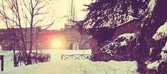 cold winter (fi0na) Tags: winter light sun white snow cold tree wall alberi photoshop landscape taglio crop neve mura sole inverno bianco freddo luce paesaggio controluce 2012 febbraio asti ritocco