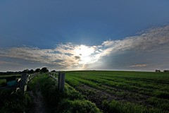 Spring Landscape (DaveJC90) Tags: city blue light sunset shadow sky cloud sun sunlight colour detail tree sunrise dark landscape evening suffolk spring colours view path walk magic sunny sharp nights tall 1001nights footpath 1001 sharpness magiccity 1001nightsmagiccity