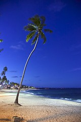 Praia de Jatica - Macei, Alagoas (Francisco Arago) Tags: ocean lighting blue light brazil sky praia beach latinamerica southamerica nature vertical azul brasil night clouds buildings photography waves colours photographer shadows areia postcard orla natureza capital bluesky cu noturna luzes bluehour fotografia sombras fotgrafo ondas prdios coqueiro macei oceano nordeste builds fotonoturna iluminao coqueiros alagoas amricadosul amricalatina edifcios colorido nvens cuazul regionordeste cartopostal coqueiral oceanoatlantico canonef24105mmf4lis repblicafederativadobrasil edificaes pontoturstico horaazul canoneos5dmarkii atraoturstica franciscoarago estadodealagoas municpiodemacei praiadajatiuca