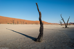 The Sun Clock of Deadvlei (Cold Shutterhand) Tags: sesriem namibia sossusvlei deadvlei sossusdunelodge