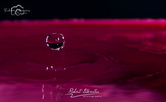 Droplet photography 13 (Robert Stienstra Photography) Tags: water droplets drops droplet waterdrops waterdropphotography dropletphotography robertstienstraphotography