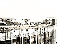 from my ex-window 4 (Masoudeh Miri) Tags: roof italy abstract architecture modern facade torino italia tetto piemonte monochrom modena dormitory turin architectura astratta monocrome inhabitant facciata residenza monocolore residenzauniversitaria abitazzione residenzauniversitariapaoloborsellino viaborsellino borsellinostreet