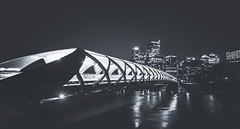 City of Mine (j e s s i c a  -) Tags: bridge urban canada calgary architecture night buildings nikon downtown alberta bowriver d800 peacebridge 1424mm