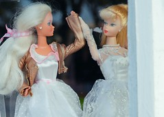 i believe in equality (catklein) Tags: barbie gaymarriage equality