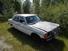 DSCN1563R (Flash 86) Tags: mercedes w123 car bil vehicle fordon old gammal övergiven abandoned rust rost junk sweden sverige