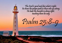 Psalm 25:8-9 nlt (Bob Smerecki) Tags: life new love cup church true rock easter born high truth heaven king christ god shepherd spirit brother father ghost religion pray jesus lord christian mount holy moses again lamb bible alive commandments messiah risen salvation promise abba sanctuary tabernacle nations sabbath blessed redeemer righteousness almighty sins scriptures passover psalm faithful inheritance oldtestament everlasting slain forgive baptised heals deciple crucified preist apostle forgiven 2589 resserection strongtower mosthigh ofolives