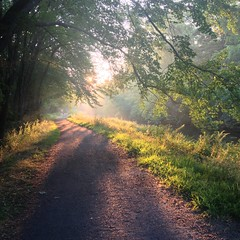 Walking into the light (jcbwalsh) Tags: newhampshire nh nashua iphone minefallspark