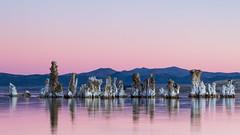 Mono Lake at Dawn (Tōn) Tags: california morning lake nature dawn unitedstates monolake sierranevadas waterscape easternsierras tufas monocounty tonyvanlecom