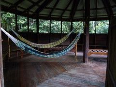 Hammock Accommodation at Turtle Mountain Iwokrama