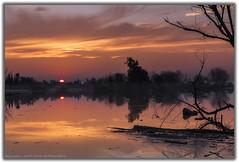Truxtun Lake. Ca (vic trujillo) Tags: california park blue trees sunset sky orange sun color water set nationalpark explore