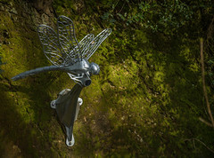 The dragonfly (Explore) (trevorhicks) Tags: statue metal canon canal dragonfly path plymouth cycle tamron 6d
