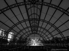 Fire Frame (john&mairi) Tags: park winter bw abandoned monochrome silhouette gardens mono scotland blackwhite glasgow victorian frame derelict glasshouse springburn wirewool