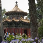 "Forbidden City // 故宫<a href=""http://www.flickr.com/photos/28211982@N07/16443880221/"" target=""_blank"">View on Flickr</a>"