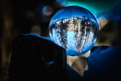 En un clin d'oeil/In a wink/En un guiño Explore (Elf-8) Tags: winter contrast forest dark woods clear cristalball