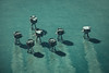seven (stocks photography.) Tags: sea coast stocks seven whitstable aerialphotography forts maunsell thamesestuary redsands stocksphotography michaelmarsh themaunsellforts
