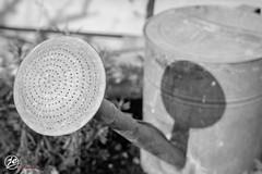 Watering_Pot (jedsd3200) Tags: bw garden garten gieskanne wateringpot