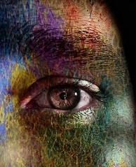 He Chameleon (Wrabitt/ Thanks all followers...) Tags: portrait color male eye art texture textura colors face ojo arte skin retrato scenic gimp chameleon colori occhio viso rostro pele colorido piel camaleonte camalen surreale procesado tessitura