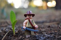 Indiana Jones (EliteTC) Tags: nature lego indianajones minifigure