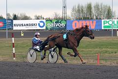 IMG_2257 (lovelymelancholy) Tags: horses horse hevoset hevonen horseraces ravit imrautio ravihevonen
