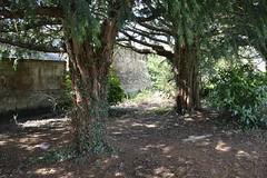 Howard Park, Kilmarnock. Quiet Nook. (Phineas Redux) Tags: scotland kilmarnock ayrshire publicparks ayrshirescenes howardparkkilmarnock