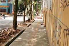(Implosion VoidListica) Tags: arbol calle colombia carro analoga telefono medellin