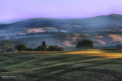 Morning lights (Agrippino Salerno) Tags: morning trees light shadow sky italy mist colors misty fog sunrise canon countryside hills tuscany valdorcia sanquiricodorcia agrippinosalerno