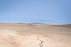 Quiet time (artvaleri) Tags: solitude fingal lambayisland rushdublin