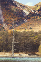 Kamikochi -  (Mathieu Noel) Tags: trip trees lake japan montagne lac matsumoto arbre japon kamikochi naganoprefecture nipon japanesealps azusa japantrip naganoken azusariver matsumotoshi alpesjaponaises